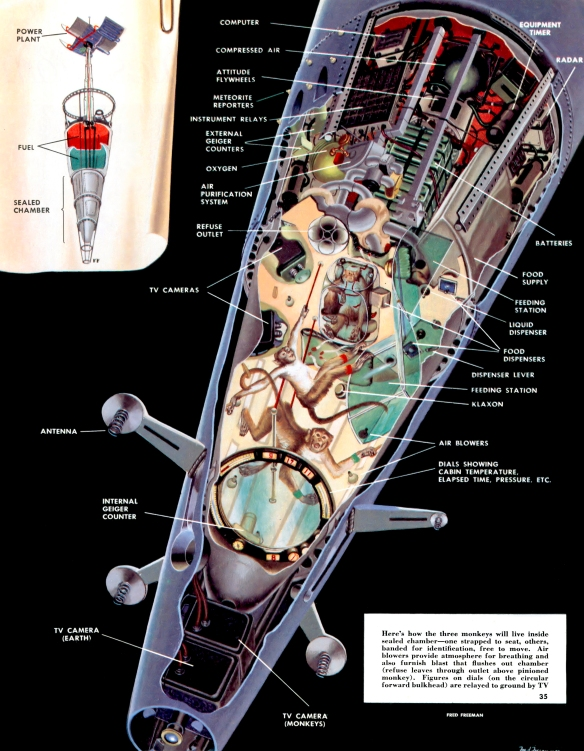 Collier 6.27.1953-p.35-Monkeys in Space.jpg.jpg